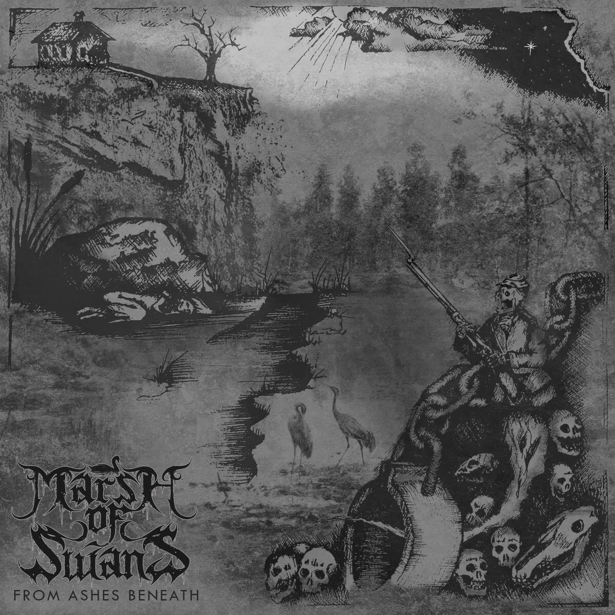 marsh-of-swans-from-ashes-beneath